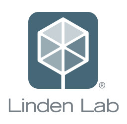 Linden Lab announces new virtual world platform